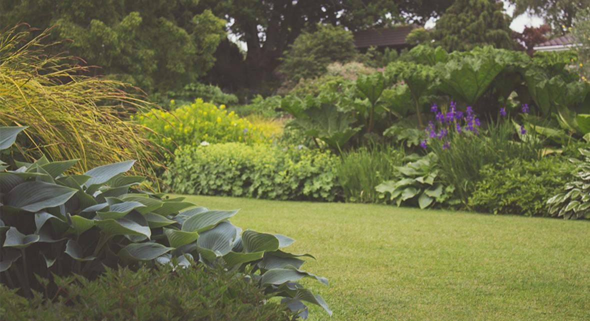 jardin avec pelouse taillé et de nombreuses fleurs