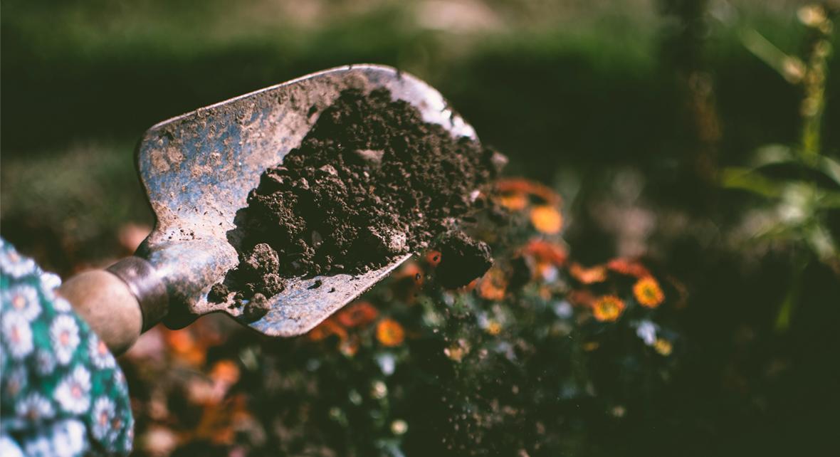 pelle avec de la terre